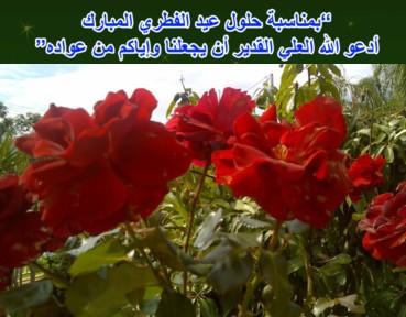eid-hulul_resize2.jpg